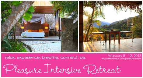 CoverPhoto-AllisonBraun-PleasureRetreat1